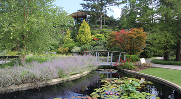 Beautiful gardens, stream and pathway at the Royal Botanical Gardens
